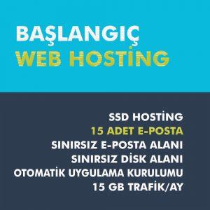baslangic web hosting paketi