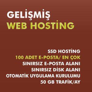 Gelişmiş web hosting paketi