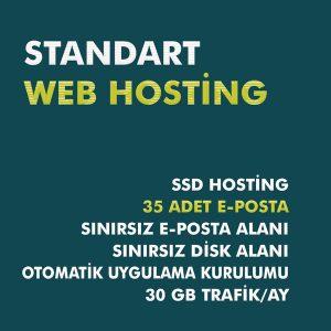 standart web hosting paketi